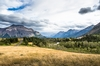 20150806_Waterton-6